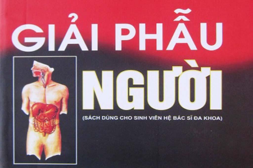 [PDF] Giải phẫu người – Đại học Y Hà Nội