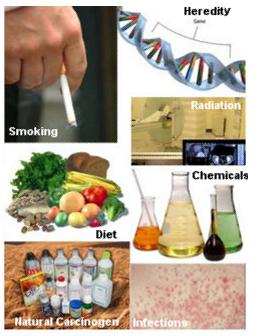 116 nguyên nhân làm tăng nguy cơ ung thư ở người