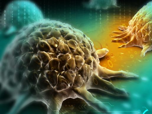 CDC khuyến cáo cách giảm nguy cơ bị mắc 24 loại ung thư thường gặp