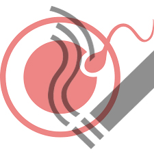 Hút thuốc lá có thể gây yếu sinh lý và hiếm muộn