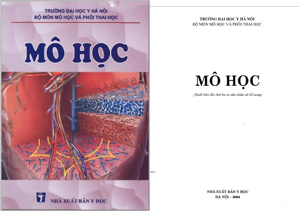 [PDF] Mô học – Đại học Y Hà Nội